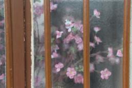Transparence : la beauté au coin de la rue