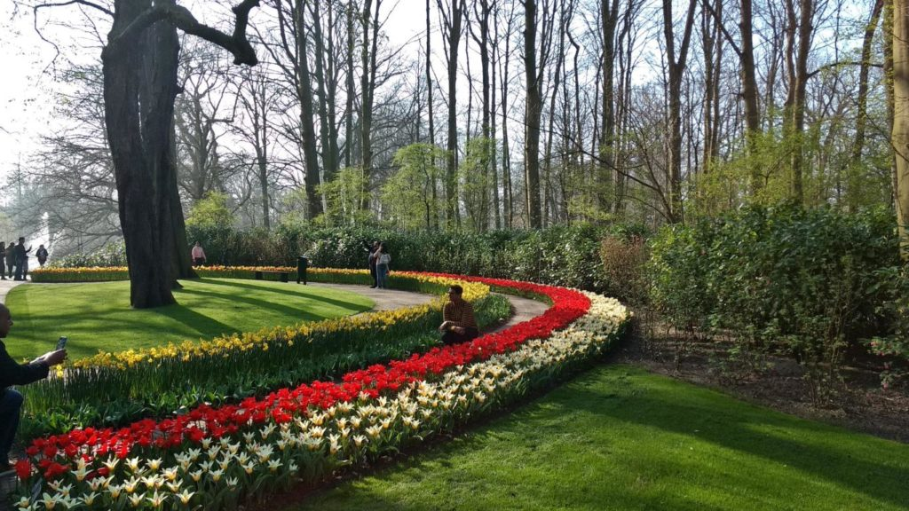 Kukenhof, jardin des tulipes