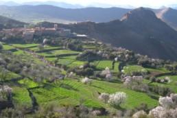 Confinement et Précarité au Sud dans le rural au Maroc