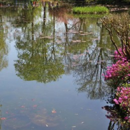 Normandie Giverny Monet impressionnisme chevaux