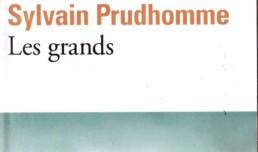 Sylvain Prudhomme - Les grands. L'Afrique de la musique, des luttes de libération, des coups d'Etat. Un ouvrage attachant