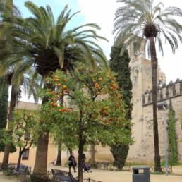 Photos de Cordoue, Grande Mosquée-Fleuve Guadalquivir crue