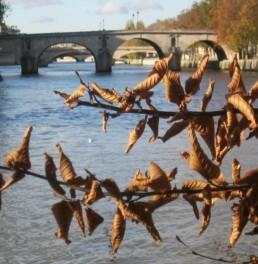 Paris la Seine 2