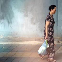Fleurs de Chine 2 suite de l'album photos