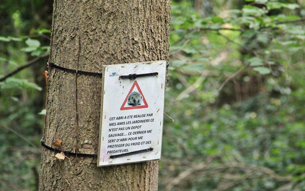 Panneau pour expliquer la présence du tas de bois mort pour confectionner un abri pour hérissons