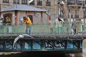 Les mouettes le corbeau les canards et les pigeons l'homme en jaune et le corbeau regardent