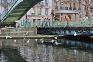 Les mouettes le corbeau les canards et les pigeons 2